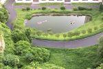 羅職院的綠化能修剪一下嗎?雜草叢生了!