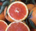 你们想要的血橙来了。