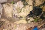 滴水贵过油。@自来水集团,漏水了