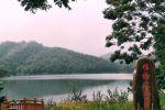 烟雨迷离之[金银湖湿地公园]