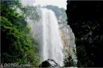 罗定泗纶双德万丈洒瀑布迎一年中最壮观的时期