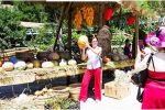 慶豐收!高州仙人洞景區舉辦豐收節活動!趕緊來體驗!