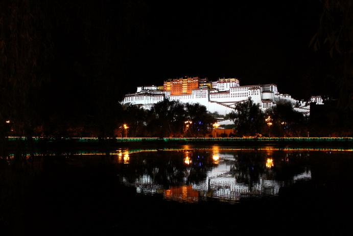布达拉宫夜景