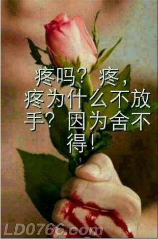 QQ图片20200217222919.png