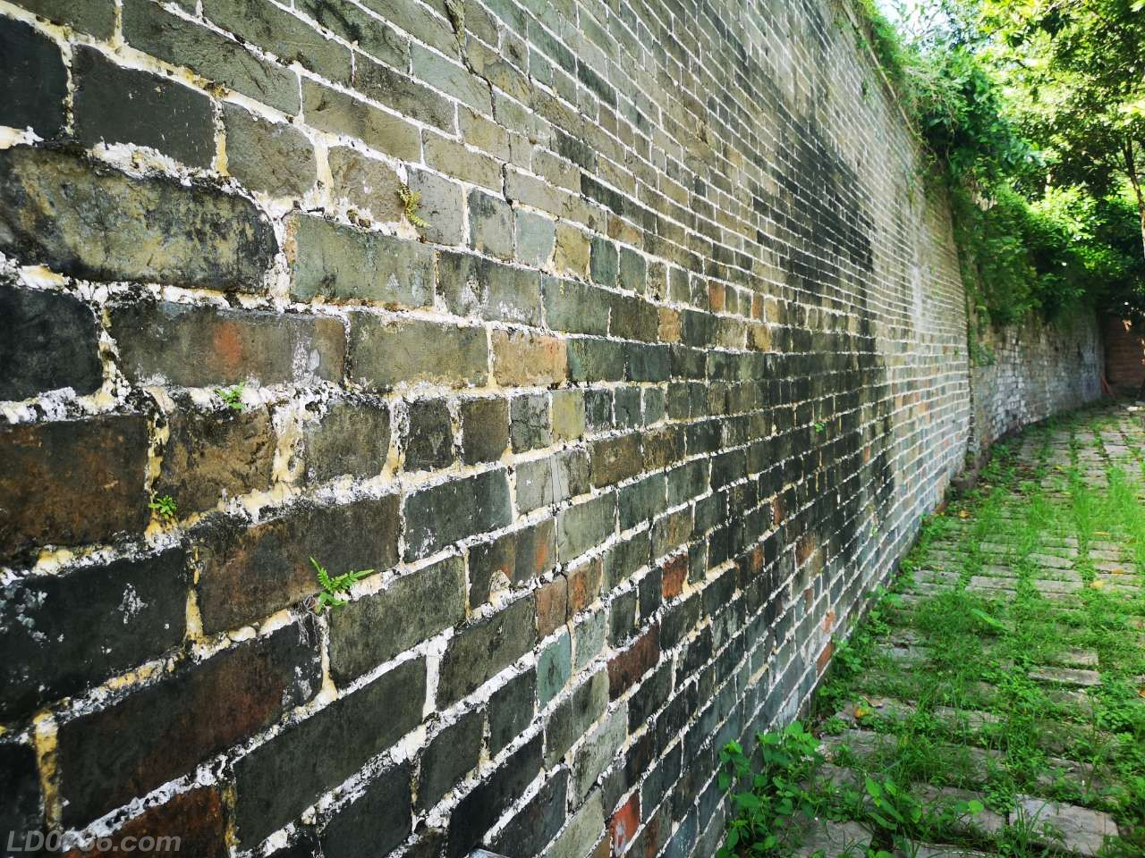 罗定中学内的明代古城墙