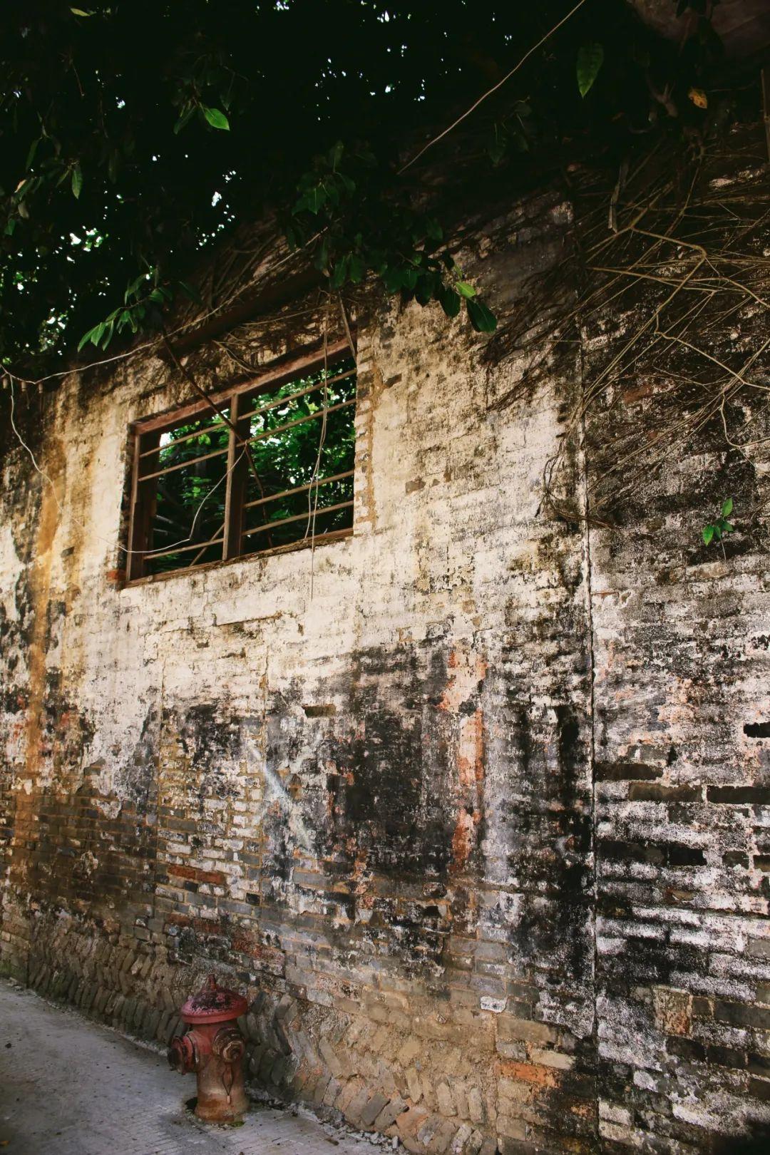 文塔脚下那些老房子的故事,一起来知多点!